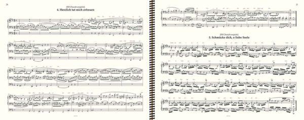 Herzlich tut mich erfreuen (No Page Turn) - Brahms complete organ works